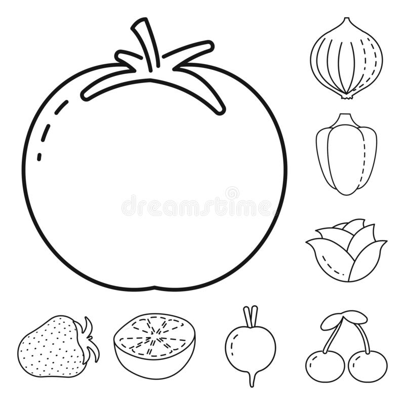 Vector design of healthy and ripe symbol. Set of healthy and harvest stock vector illustration. Vector illustration of healthy and ripe sign. Collection of stock illustration