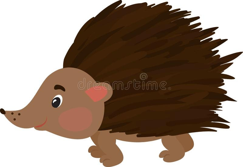 Vector illustration of hedgehog. Isolated on white. Cute cartoon character. vector illustration