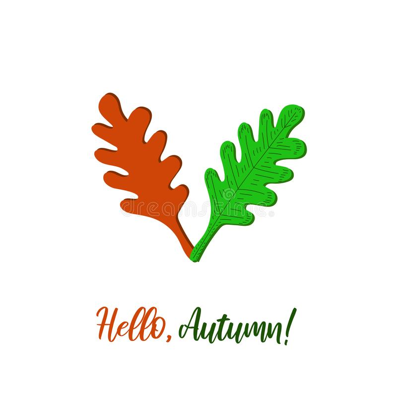 Vector illustration. Hello, autumn quote and colorful oak tree leaves royalty free illustration