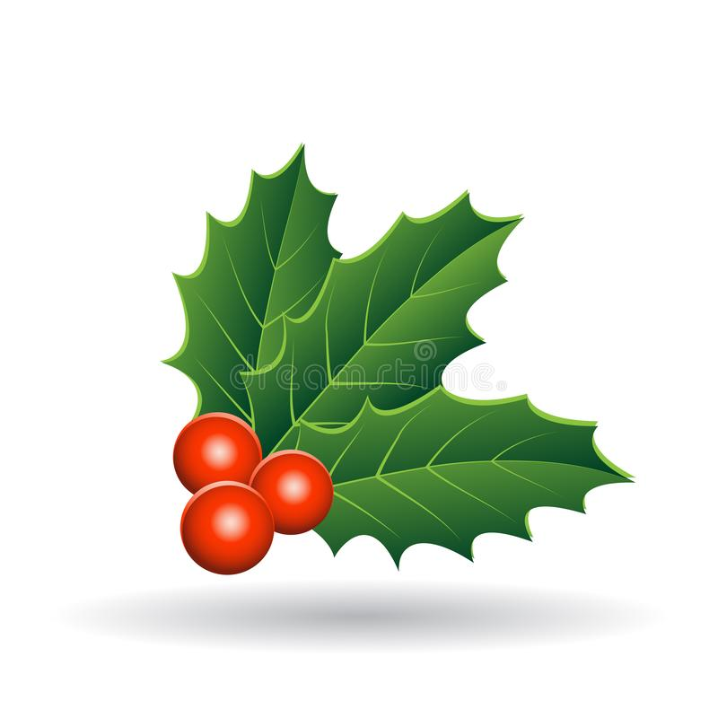Holly Berries with Stacked Leaves Vector Illustration. Vector Illustration of Holly Berries with Stacked Leaves isolated on a White Background royalty free illustration