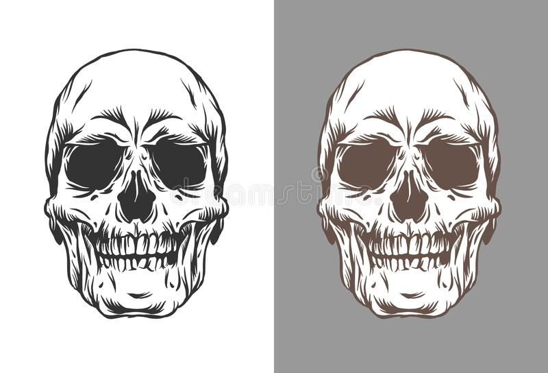 Vector illustration of human skulls in engraving style black and brown color isolated on white and gray background. Vector illustration of human skulls in royalty free illustration