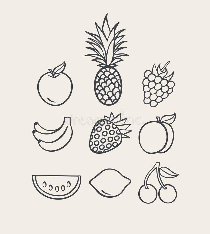 Vector illustration icon set of fruit: apple, pineapple, raspberry, banana, strawberry, peach, watermelon, lemon, cherry vector illustration