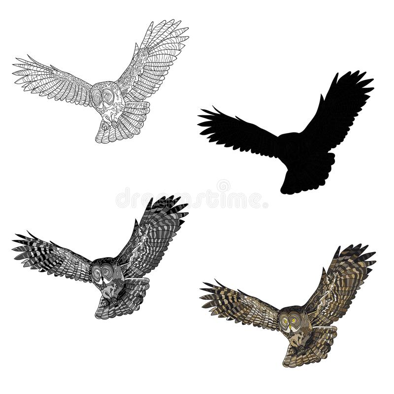 Vector illustration. An image of a flying owl. Black and white line, silhouette, black and white, gray and color image. royalty free illustration
