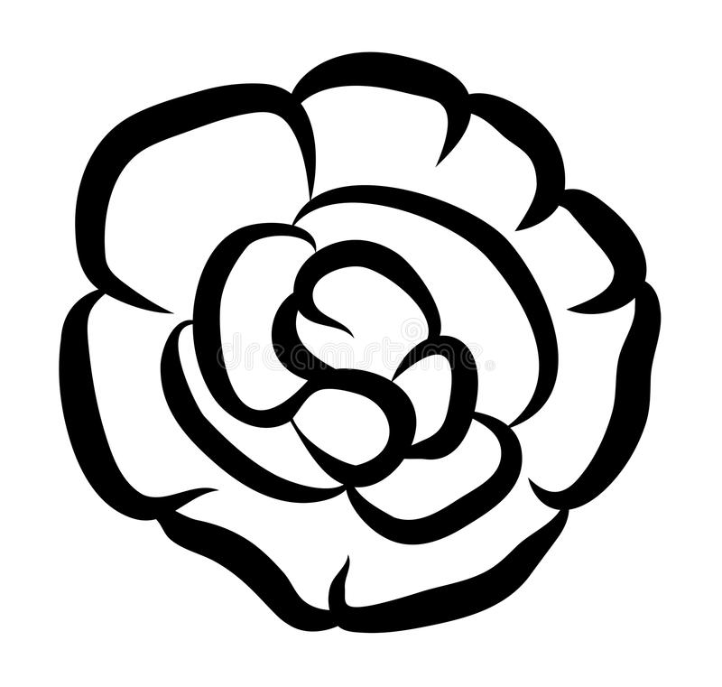 Vector illustration of impatiens flower stock illustration