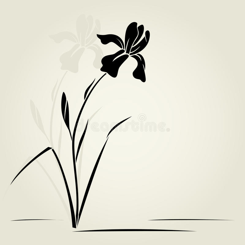 Download Vector iris flower. stock vector. Illustration of nature - 29875446