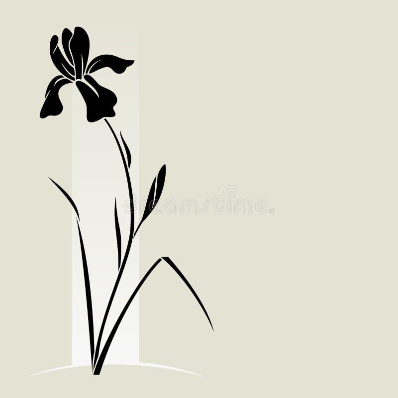 Download Vector iris flower. stock vector. Image of detail, decoration - 29875451