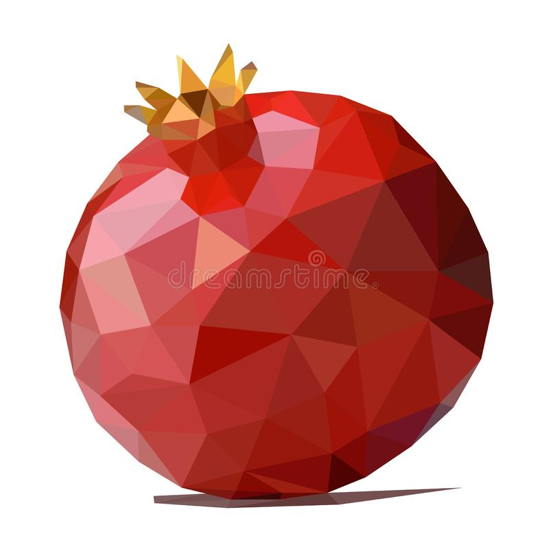 Polygonal pomegranate vector illustration isolated royalty free stock images