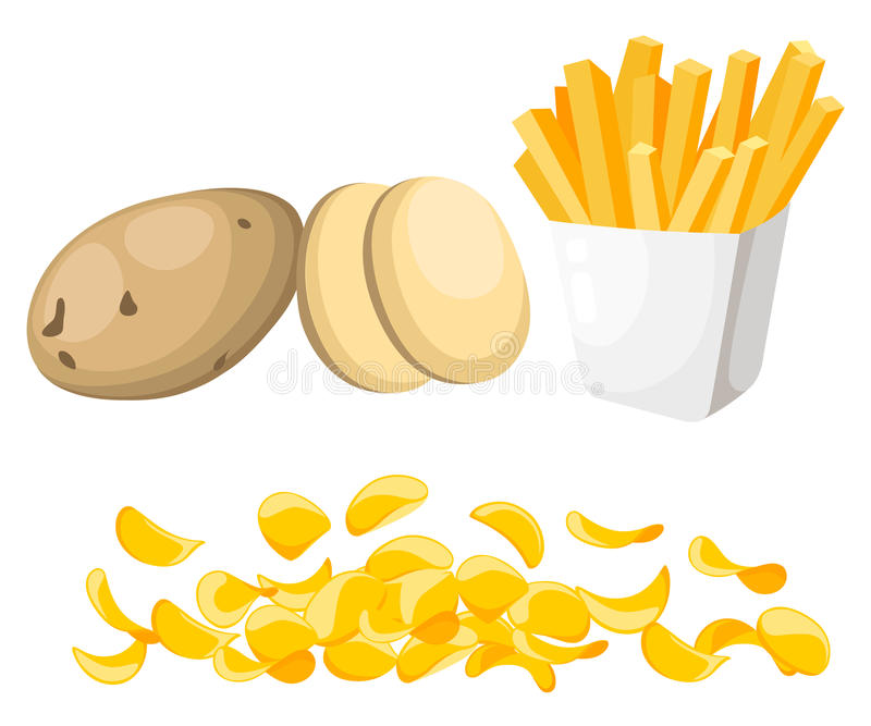 Vector illustration isolated on white background Potatoes Set of whole, slices, half, lobule, circle potatoes chips French fries stock illustration