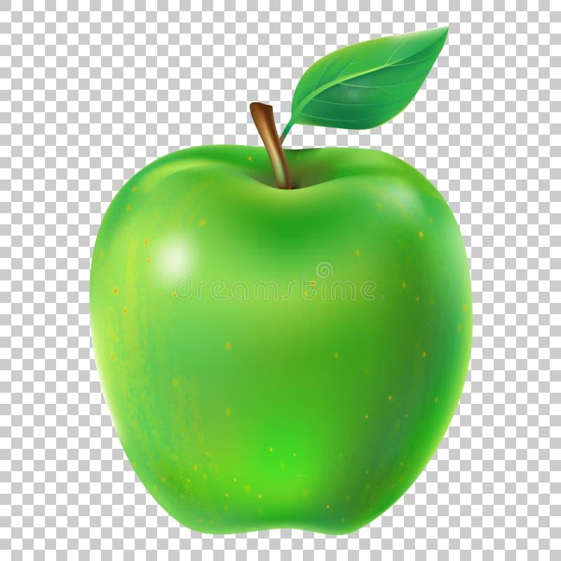 Vector illustration of a juicy apple. Vector illustration of a juicy green apple with leaf vector illustration