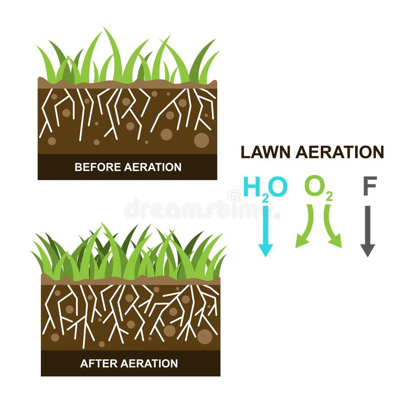 Vector illustration with lawn aeration. On a white background. Can be used for landscaping service and  gardening grass lawncare stock illustration