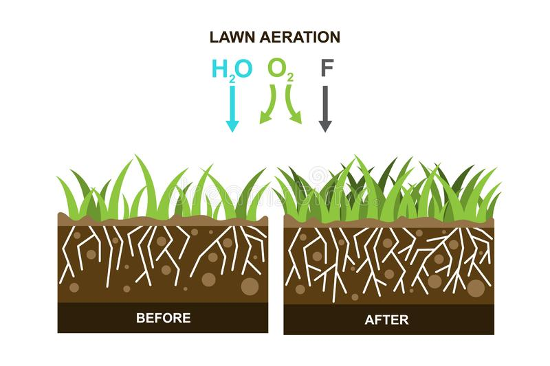Vector illustration with lawn aeration. On a white background. Can be used for landscaping service and  gardening grass lawncare vector illustration