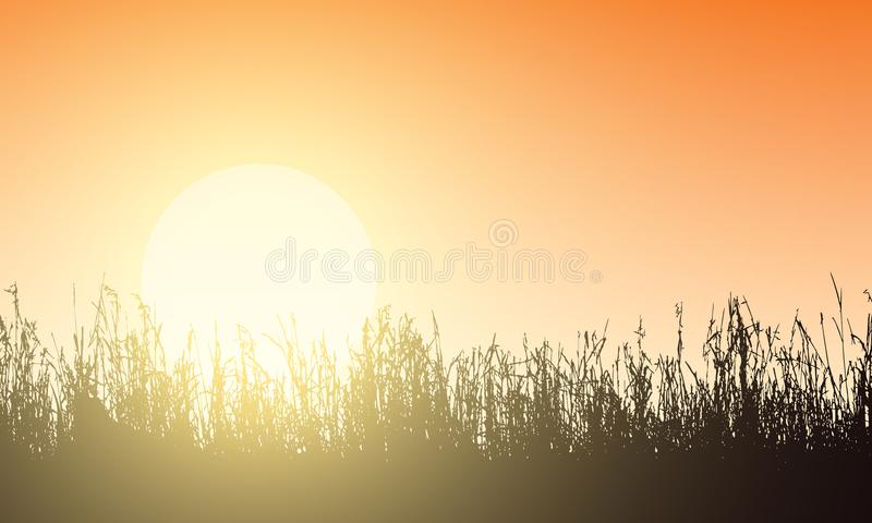 Vector illustration of lawn with grass seams, orange sky and rising sun, backlight sunlight. With space for text royalty free illustration