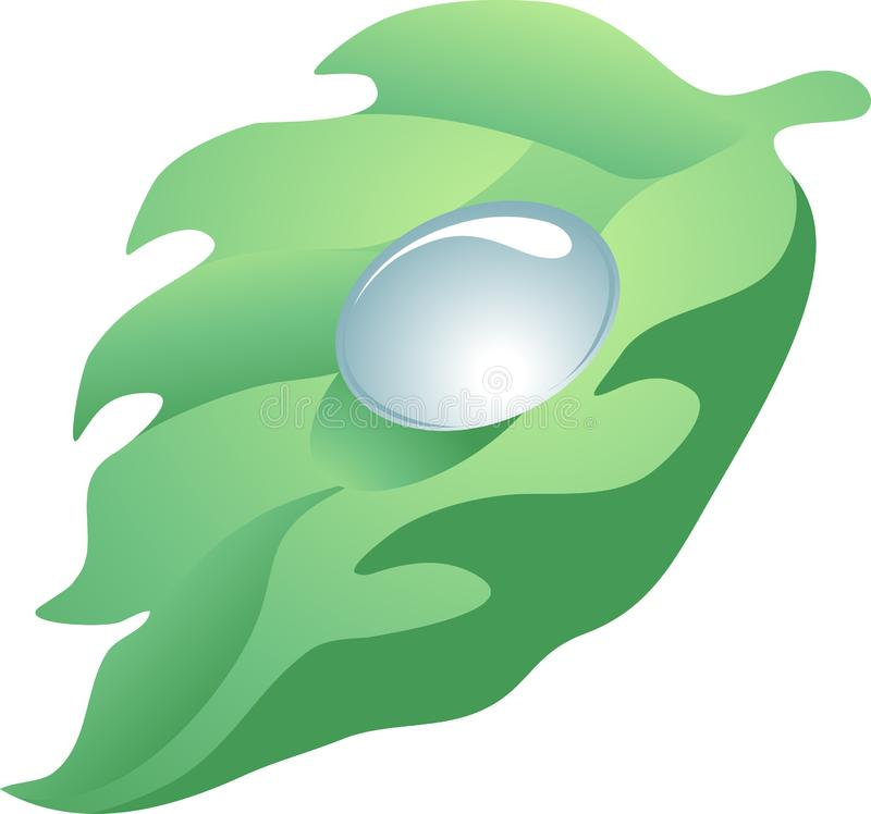 Vector illustration of the leaf with the drop
