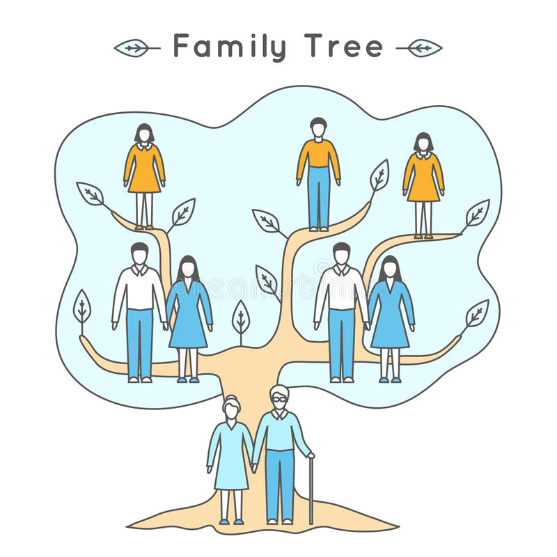 Vector illustration in linear style. Flat icons. Family tree. royalty free illustration