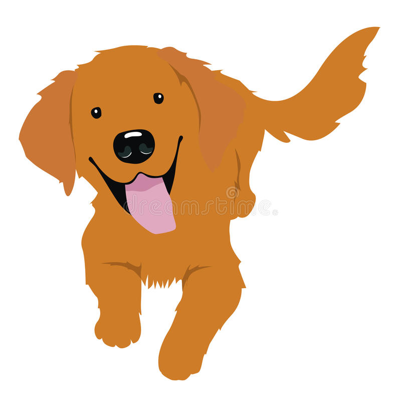 vector illustration little golden retriever stock vector