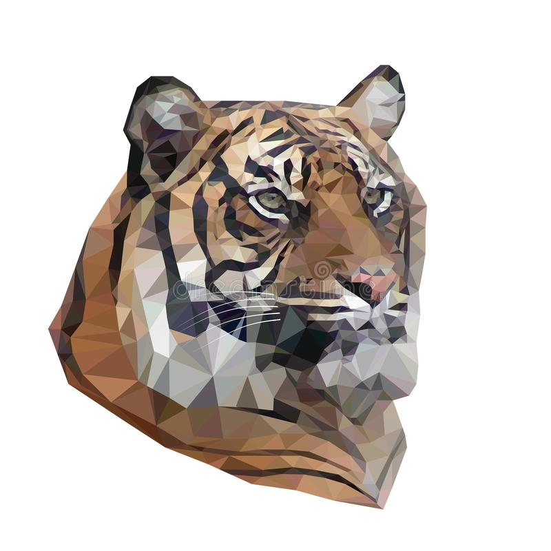 Vector illustration of low poly tiger. royalty free illustration