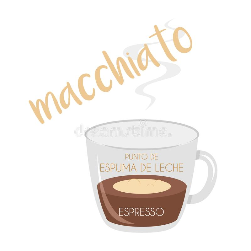 Macchiato coffee cup icon with its preparation and proportions and names in spanish. Vector illustration of a Macchiato coffee cup icon with its preparation and stock illustration
