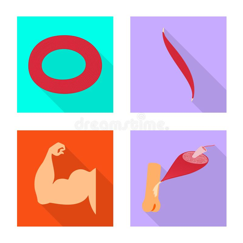 Vector design of muscle and cells sign. Collection of muscle and anatomy stock symbol for web. Vector illustration of muscle and cells logo. Set of muscle and vector illustration