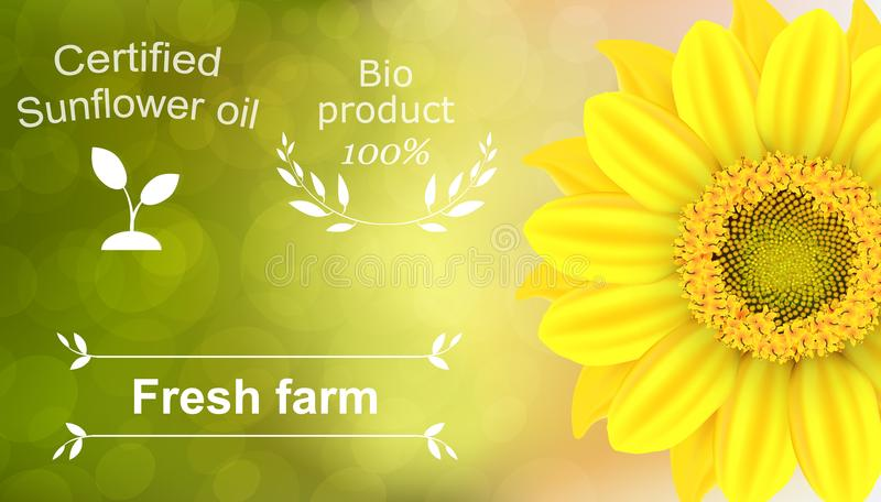 Vector illustration of a 100% natural certified sunflower oil background. Ready objects, elements with agriculture theme for your stock photo