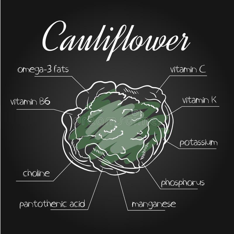 Vector illustration of nutrients list for cauliflower on chalkboard backdrop.  royalty free illustration