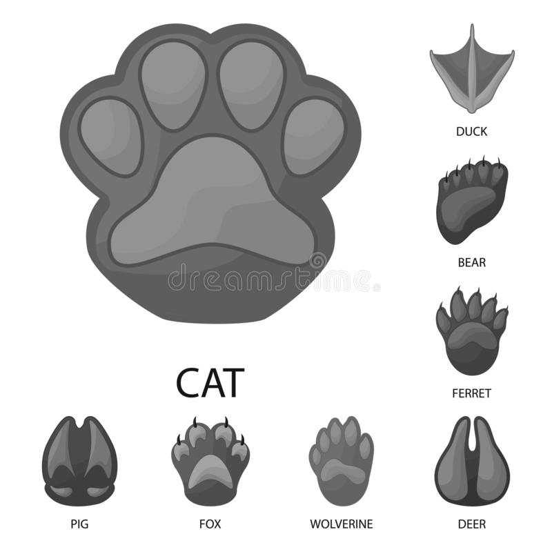 Free Vector Illustration Of Wildlife And Trace Symbol. Collection Of Wildlife And Walk Vector Icon For Stock. Stock Photography - 162262872