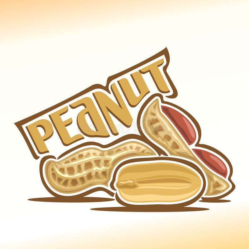 Vector illustration of peanut stock illustration