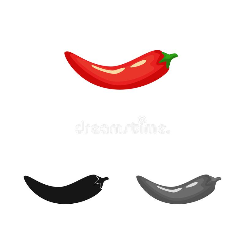 Vector illustration of pepper and red logo. Collection of pepper and cook vector icon for stock. Isolated object of pepper and red icon. Set of pepper and cook stock illustration