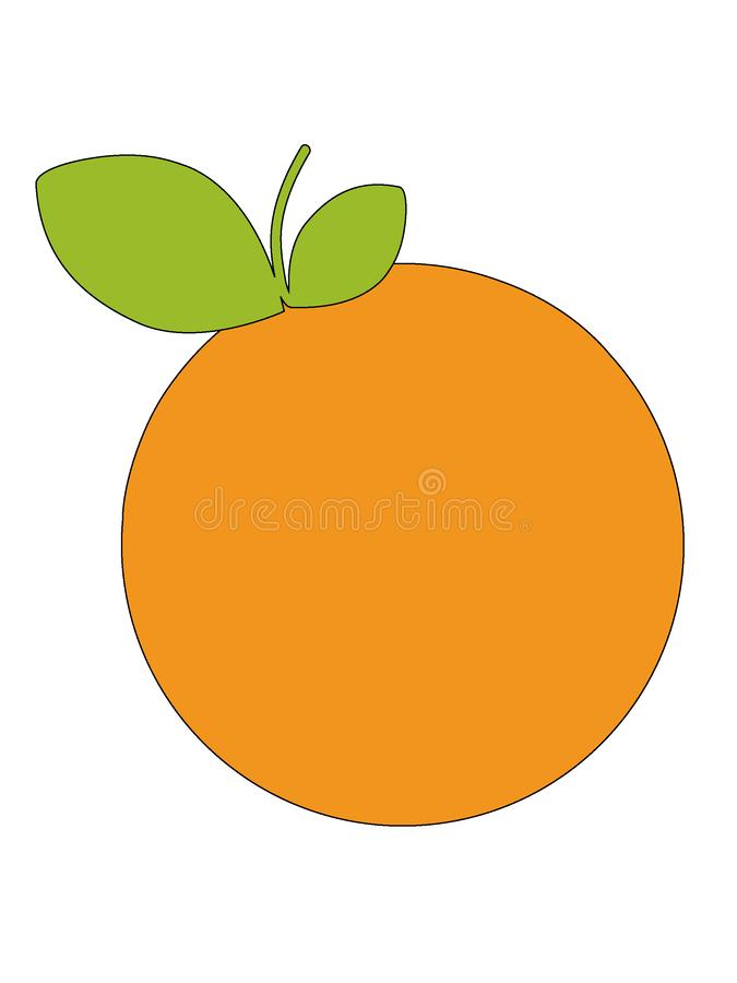 Picture of an Orange Fruit. Vector illustration of the Picture of an Orange Fruit stock illustration