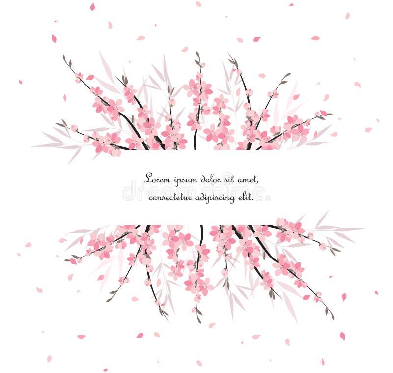 Sakura branch decoration vector illustration
