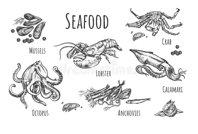 Healthy exotic seafood collection vector illustration