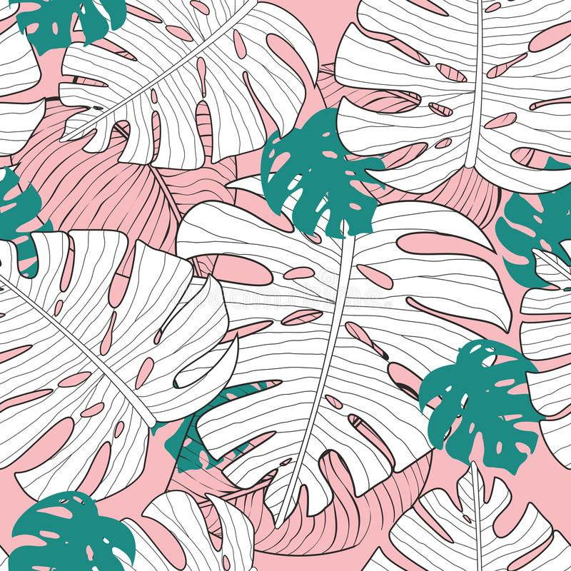 Vector illustration of seamless exotic floral pattern with green and white monstera leaves on pink background, tropical stock illustration