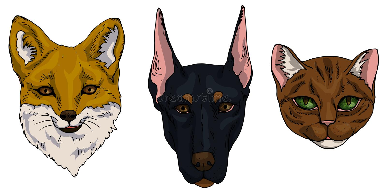 Vector illustration set of cat, dog, fox flat icons. Cartoon and realistic animals in brown, black and redhead colours isolated on stock illustration