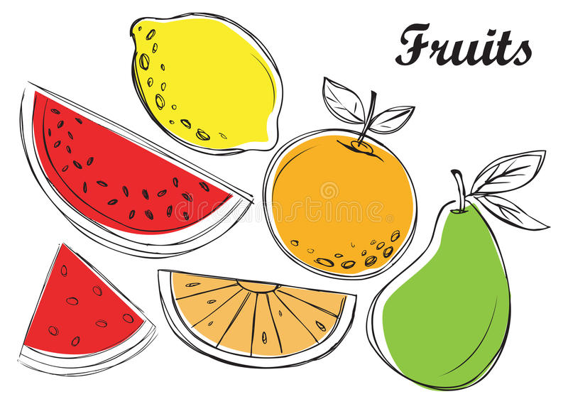 Fruits illustration in vector. Vector illustration - set of fruits icon stock illustration