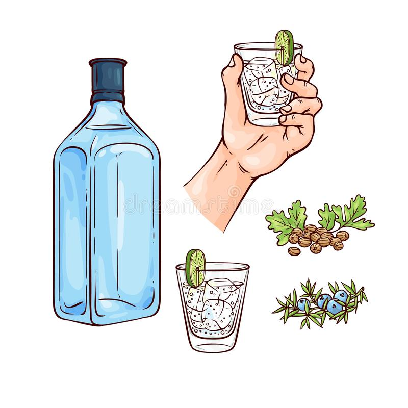 Free Vector Illustration Set Of Gin And Tonic Cocktail With Blue Bottle Of Alcohol Drink And Mixed Beverage In Glass. Royalty Free Stock Photos - 130044548