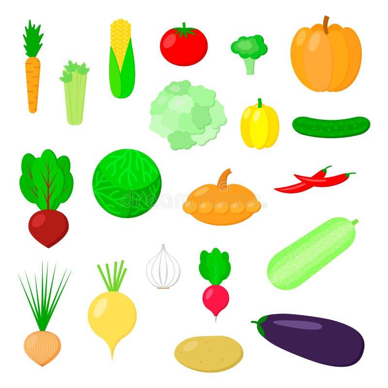 Vector illustration. Set of vegetables. cauliflower, pumpkin, He royalty free illustration