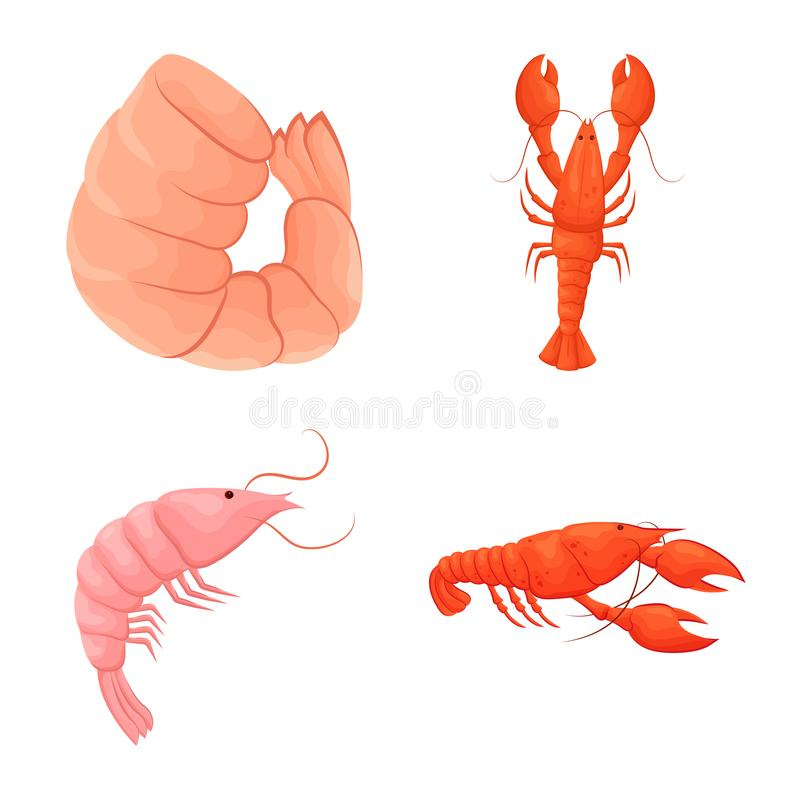 Vector illustration of shrimp and crab logo. Set of shrimp and sea vector icon for stock. stock illustration