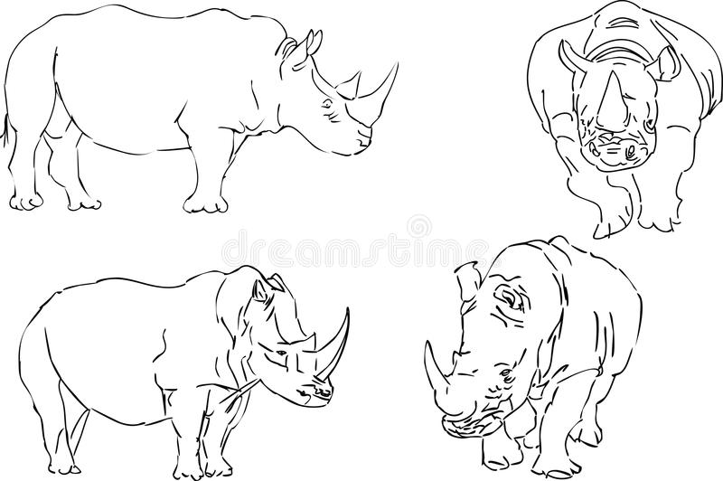 Download Vector Illustration Sketch Of Rhino Royalty Free Stock Image - Image: 15421976