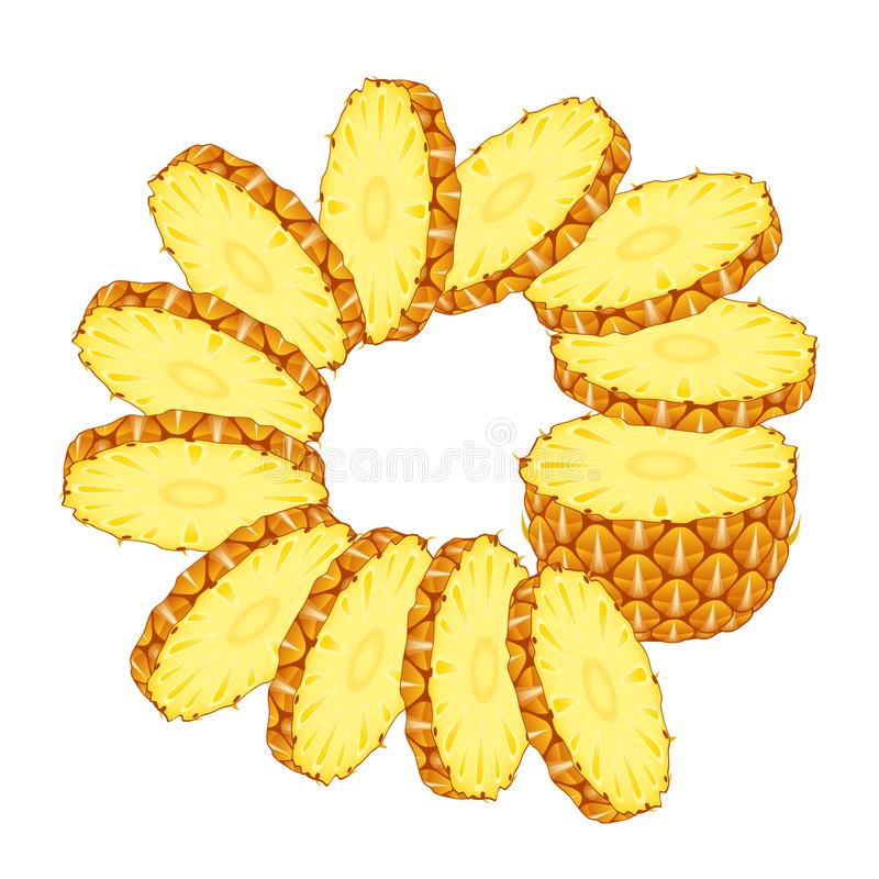 Sliced pineapple with rings. Vector illustration of sliced pineapple with rings isolated on white background. Sliced tropical fruit stock illustration