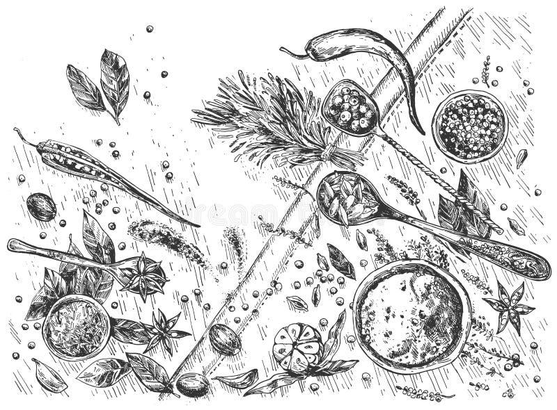 Cuisine aromatic spices still life stock illustration