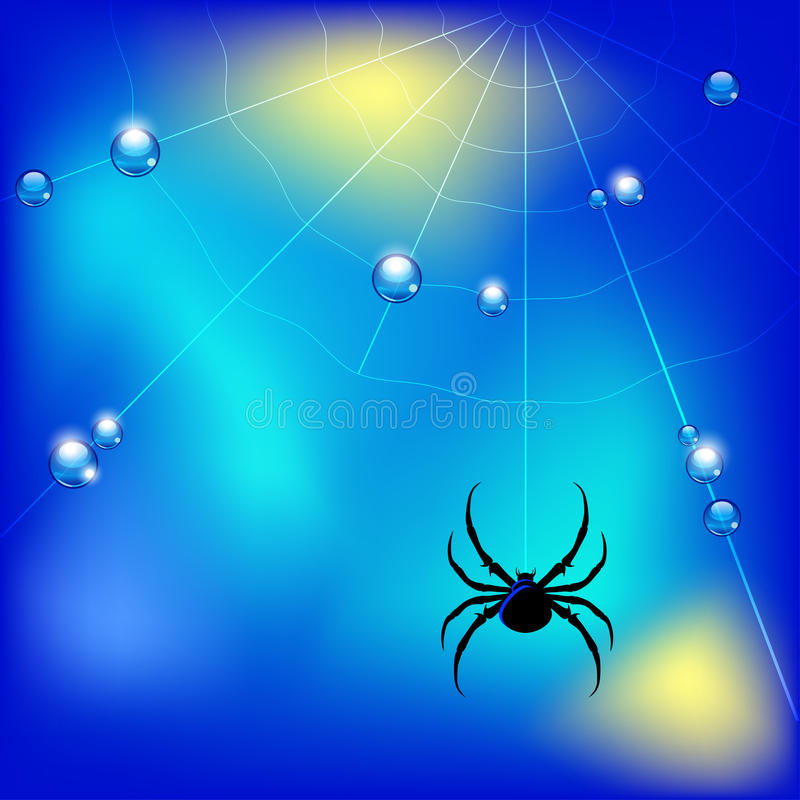 Vector illustration with spider , web and water drops royalty free illustration