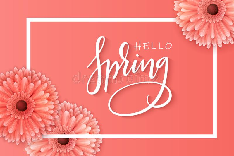 Vector illustration of spring banner template with hand lettering phrase - hello spring - with realictic gerbera flowers stock illustration