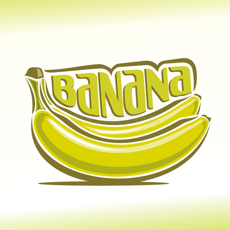 Vector illustration on the theme of banana vector illustration