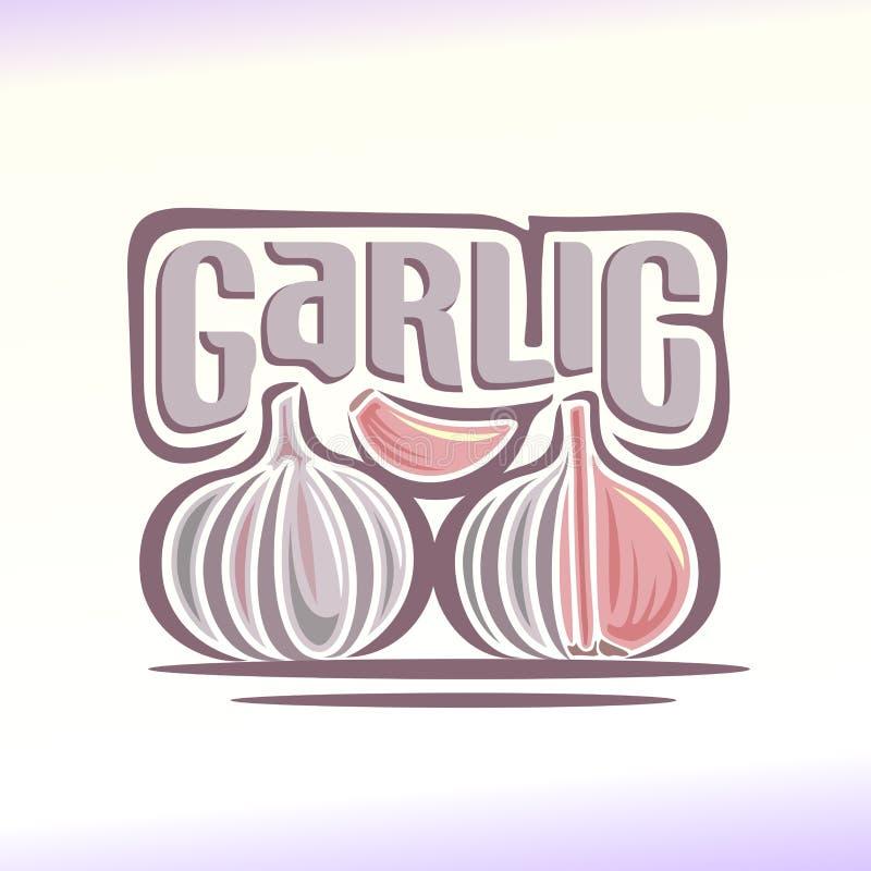 Vector illustration on the theme of garlic stock illustration