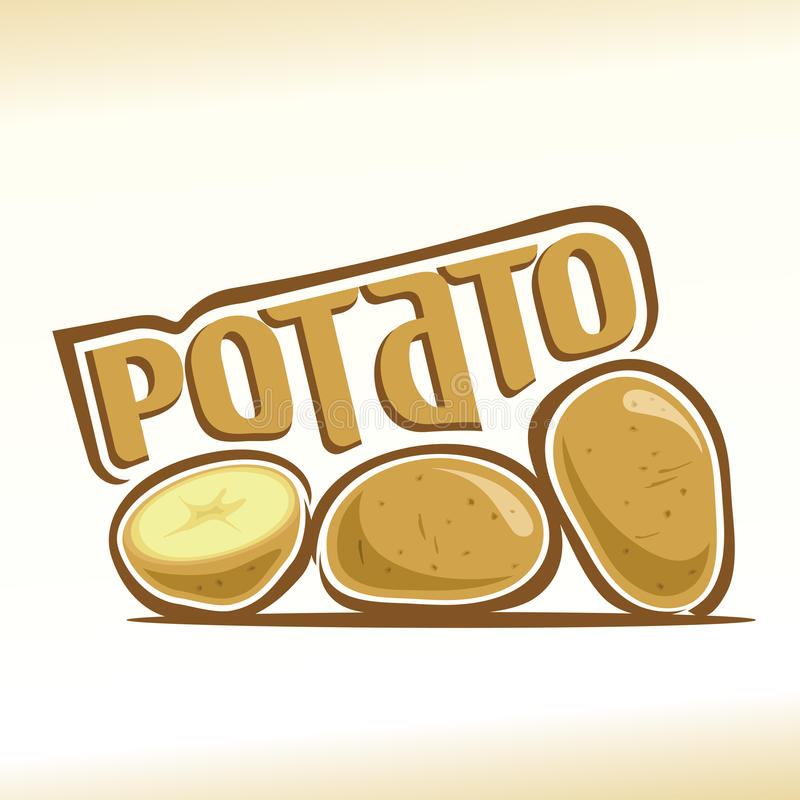 Vector illustration on the theme of potato royalty free illustration