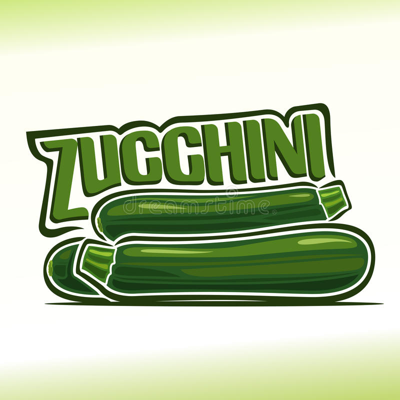 Vector illustration on the theme of zucchini royalty free illustration