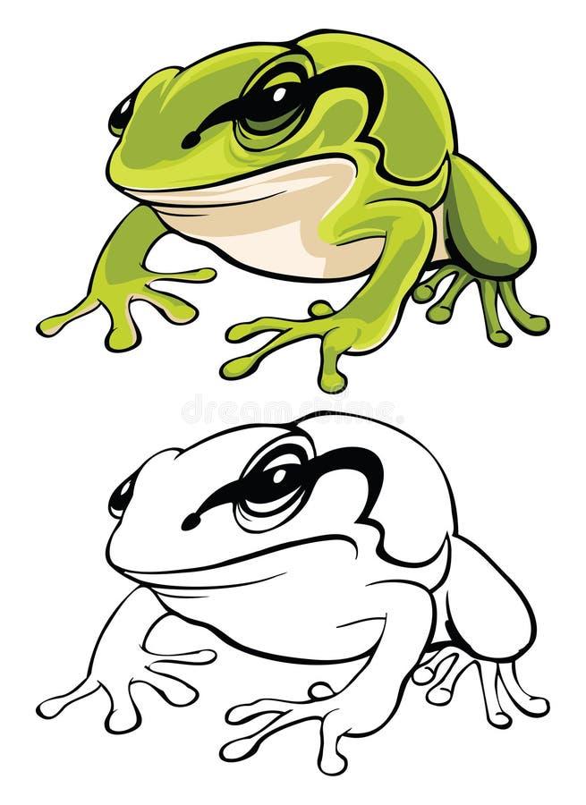 Vector illustration of tree frog stock illustration