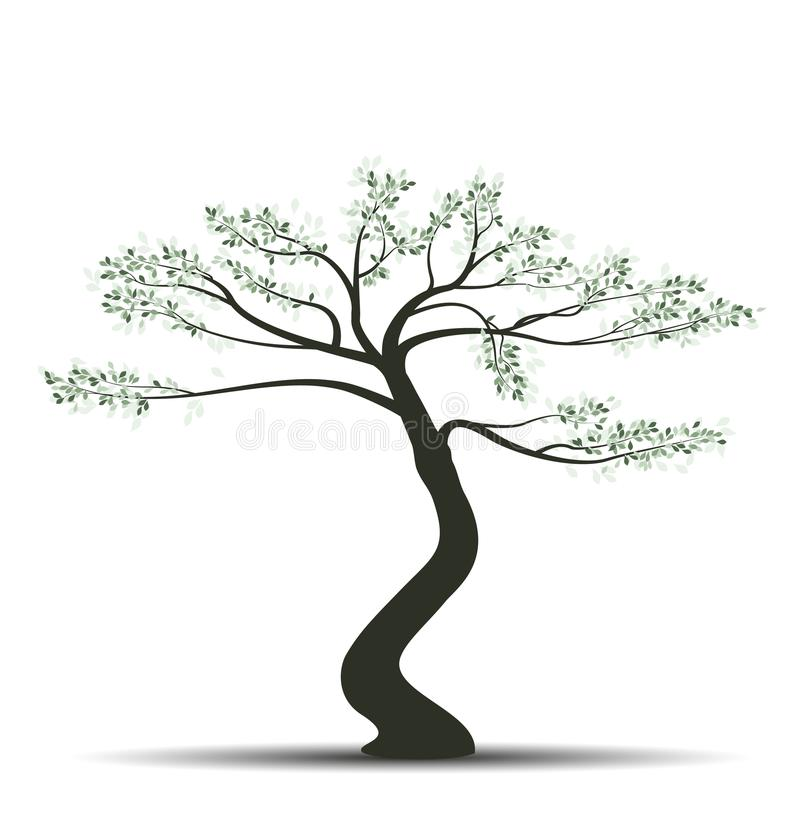 Bonsai tree with leaves stock illustration