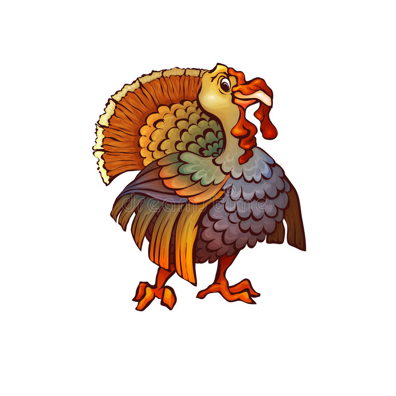 Vector illustration of turkey in cartoon style. On transparent background vector illustration