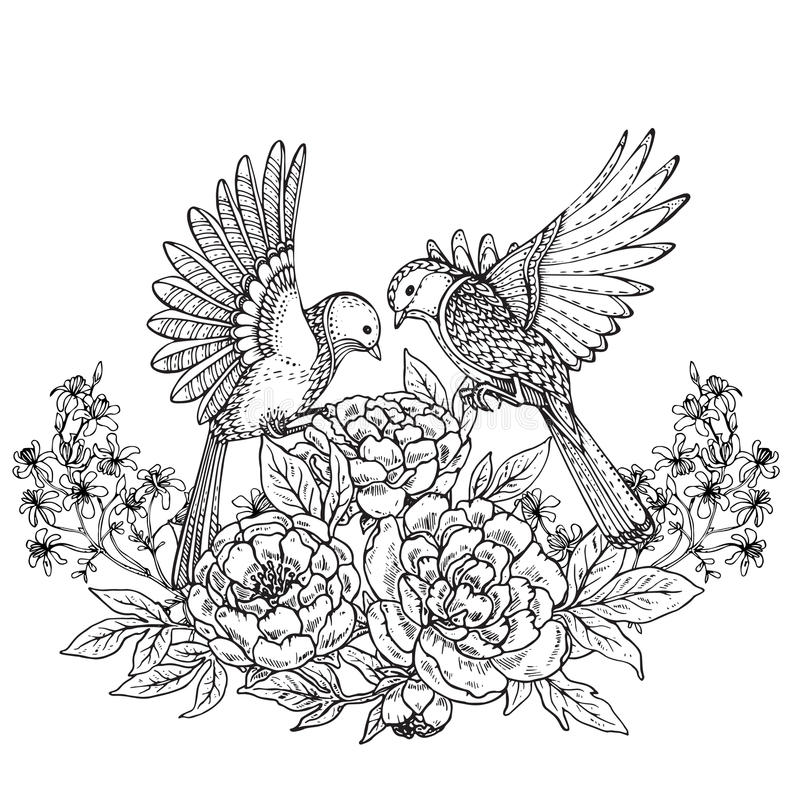Vector illustration of two hand drawn graphic birds and peony fl vector illustration