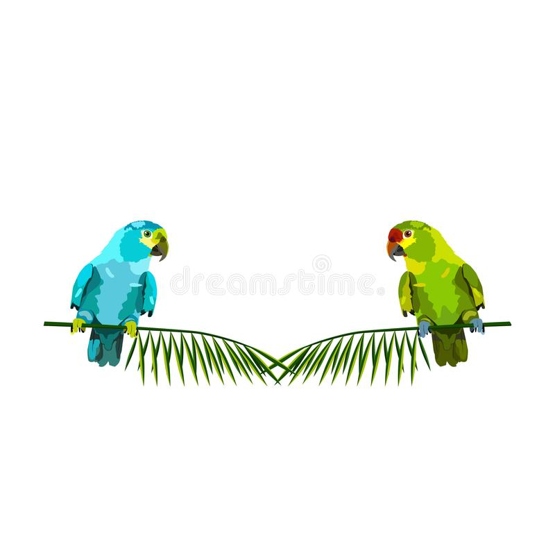 Vector illustration of two parrots on palm branches vector illustration